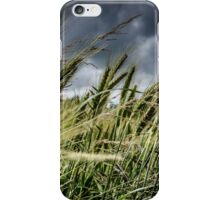 Barley in the Wind iPhone Case/Skin