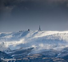 Crazy Winds  by Wild Range Photography