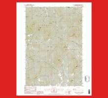 USGS Topo Map  Vermont VT Stone Mountain 337666 1988 24000 One Piece - Long Sleeve