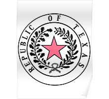 Texas PINK N BLACK | State Seal | SteezeFactory.com Poster