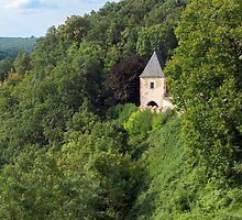 Karlstejn castle. by FER737NG