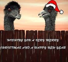 'EMUS AT CHRISTMAS' by jansimpressions