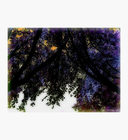 Arches of Violet & Orange Photographic Print