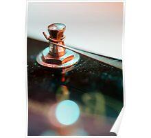Electric guitar tuning peg macro Poster