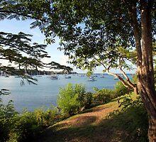 Prickly Bay, Grenada. by John Dalkin