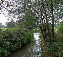 River Medway at Forest Row by Sue Robinson