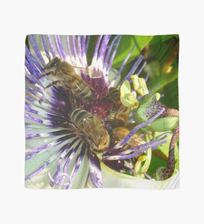 Passion Flower and Honey Bees Collecting Pollen Scarf