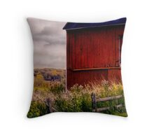 """"""" The View """" Throw Pillow"""