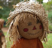 Happy Scarecrow by Cityside Photography