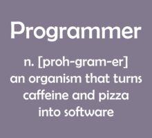 Programmer definition Kids Clothes
