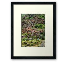 Llyndy Isaf Framed Print