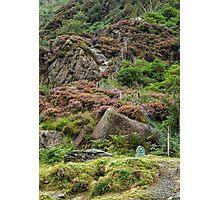 Llyndy Isaf Photographic Print