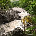 View from Invermoriston Bridge by triciamary