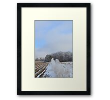 First Frost # 4 Framed Print
