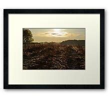 As the Sun Rises # 2 Framed Print