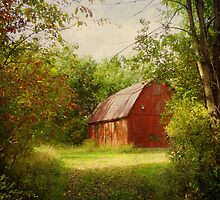 Red Barn in The Woods by SRowe Art