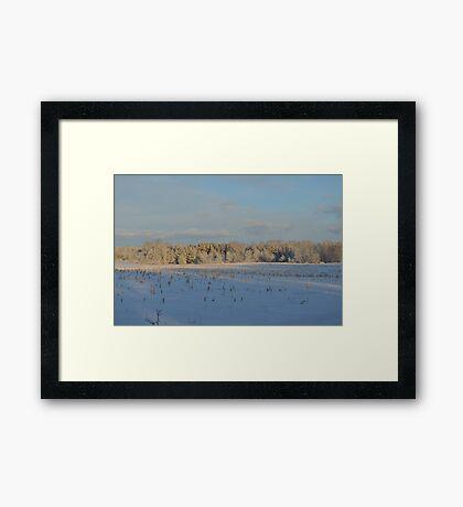 Minnesota in February # 1 Framed Print