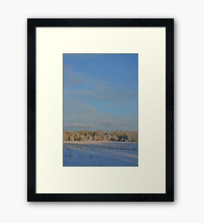 Minnesota in February # 2 Framed Print