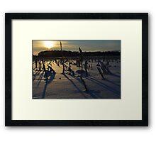 Minnesota in February # 5 Framed Print