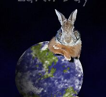 Earth Day Bunny Rabbit by jkartlife