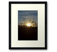 Sun Beams # 2 Framed Print