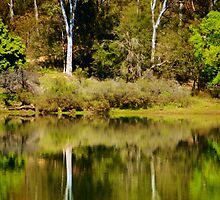 Refelections of Eildon by D-GaP