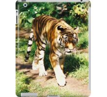 Strolling By iPad Case/Skin