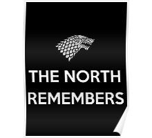 House Stark The North Remembers Poster