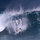 The Art Of Surfing In Hawaii 25 by Alex Preiss