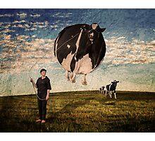 Bovine Balloon Photographic Print