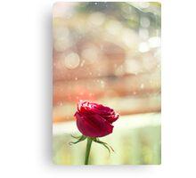 Bokeh Romance Canvas Print