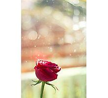 Bokeh Romance Photographic Print