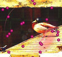 Cunning Canadian Duck by ArtOfE