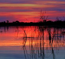 Sunset at Nxebega by jozi1