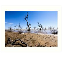 Menindee Lake NSW Australia  Art Print