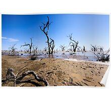 Menindee Lake NSW Australia  Poster