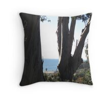 View from Adelaide Drive Throw Pillow