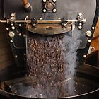 Coffee roaster pouring beans by sumners