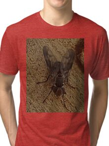 Common House Fly Tri-blend T-Shirt