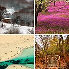 Four Seasons in Greece by Hercules Milas