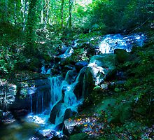 Amicalola Falls by harryvw
