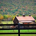 farm life autumn by Tgarlick