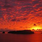 Hahei Sunrise - New Zealand by Nicola Barnard