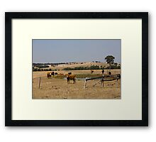 The Fields Of Windermere Framed Print