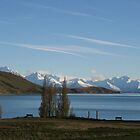 Lake Tekapo - New Zealand by Nicola Barnard