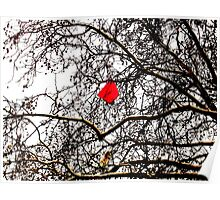 Deflated Red Balloon in a Tree Poster