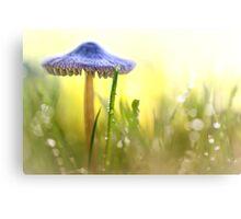 Magic Mushroom... Canvas Print