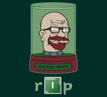 Walter White's Head In A Jar - Breaking Bad / Futurama Mashup by TapedApe