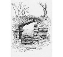 Dunboy Castle  Photographic Print