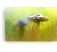 Mighty Marvelous Mushroom.... Canvas Print